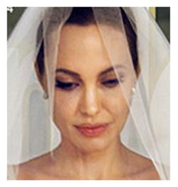 Jolie wedding2