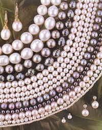 34 MIXTURE Buying Pearls